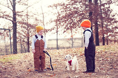 Two boys and a dog Royalty Free Stock Image