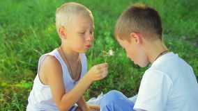Two boys dressed in white, blowing dandelions on stock footage