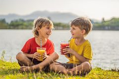 Two boys drink healthy smoothies against the backdrop of palm trees. Mango and watermelon smoothies. Healthy nutrition royalty free stock photography