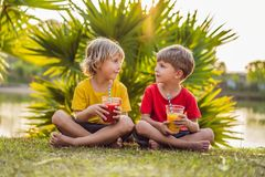 Two boys drink healthy smoothies against the backdrop of palm trees. Mango and watermelon smoothies. Healthy nutrition stock images