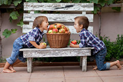 Two boys, eating apples Stock Photos