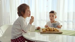 Two boys having breakfast in modern kitchen. Boy eat cookie with milk. White Table in Kitchen. Mother and two sons have. Breakfast. Cookies with milk stock footage