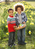 Two Boys Having Easter Egg Hunt In Daffodil Field. Smiling royalty free stock photo