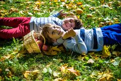 Girl and two boys lay on the grass and eat apples royalty free stock image
