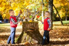 Two boys in the autumn park. Two boys near the magic stump with gingerbread in the autumn park Stock Photos