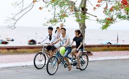 Two Boys and One Girl Riding Bicycles on Road Beside Body of Water Royalty Free Stock Photo