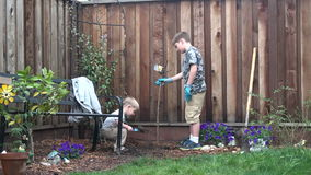 Two boys planting a tree in backyard stock video