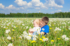 Two  boys play on a summer meadow Royalty Free Stock Photos