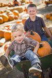 Two Boys Playing in Wheelbarrow at the Pumpkin Patch. Two Little Boys Playing in Wheelbarrow at the Pumpkin Patch in a Rustic Country Setting Royalty Free Stock Images
