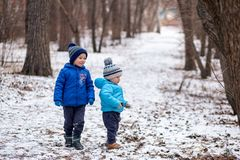 Two boys are playing in a winter forest stock photo