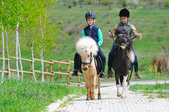 Two boys with ponies Stock Image