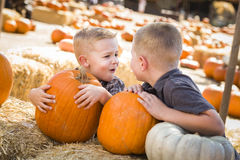 Two Boys at the Pumpkin Patch Talking and Having Fun Stock Images
