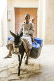 Two boys ride their donkey in Rissani in Morocco. Royalty Free Stock Photos