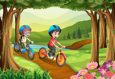 Two boys riding bicycle in the park Royalty Free Stock Photography