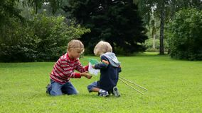 Two boys seeking and catching insects with a net in the grass stock footage