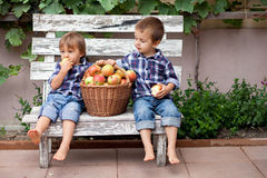 Two boys, sitting on a bench, eating apples and having fun Royalty Free Stock Photography