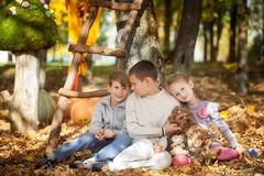 Boys in the autumn park. Two boys sitting on a big pumpkin in the autumn park Stock Photo