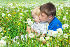 two boys  on a summer meadow Stock Photos