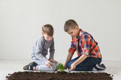 Two boys are thrown plants for Earth Day Royalty Free Stock Images