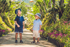 Two boys, a traveler in Vietnam against the backdrop of Vietnamese hats stock photo