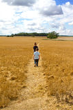 Two boys walking through a wheat field Royalty Free Stock Image
