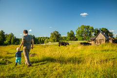 Two boys watching cows in a meadow. Royalty Free Stock Image