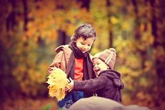 Two Boys Wearing Jacket Holding Yellow Maple Leaves royalty free stock photos