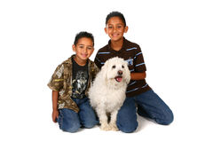 Two Boys With a White Dog Royalty Free Stock Photo
