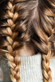 Two braids Royalty Free Stock Images