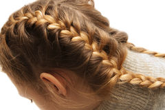 Two braids Stock Photography
