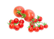 Two branches of cherry tomato and two conventional tomatoes Royalty Free Stock Images