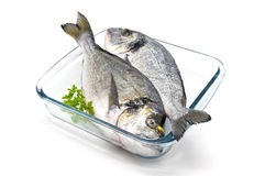 Two bream. Two gold in glass baking dish Stock Photo