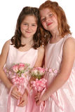 Two Bridal Sisters Full Stock Photography