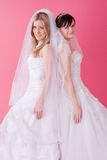 Two brides. Two happy bride on pink Royalty Free Stock Photography
