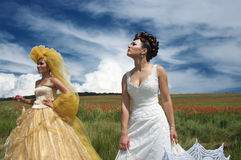 Two brides Royalty Free Stock Images