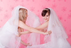 Two brides fight Royalty Free Stock Photo