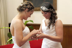 Two brides getting married exchange rings stock image