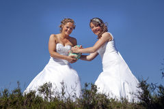 Two brides play rugby in wedding dress against blue sky Stock Photography