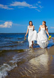 Two brides on shore stock image