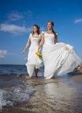 Two brides on shore royalty free stock photos