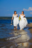 Two brides on shore Stock Photography