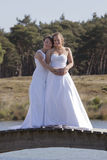 Two brides on wooden bridge against blue sky background Royalty Free Stock Photography