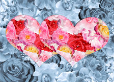 Two bright hearts with a pattern of roses on a gray floral backg. A collage of different roses on the subject of love and weddings stock photography