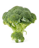 Two broccoli florets Stock Photos