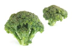 Two broccoli i Stock Photos