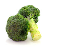 Two Broccoli Stalks On White royalty free stock photography