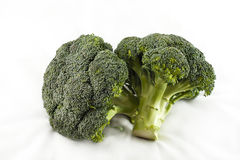 Two Broccolis Stock Image
