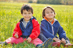 Two brother on meadow Stock Photography