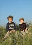 Two Brothers. Portrait of two boys on a grass grown dike Stock Image