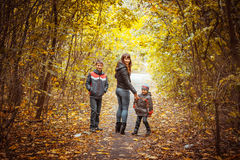 Two brothers in autumn park. Mother and suns walking in the autumn park Royalty Free Stock Photography